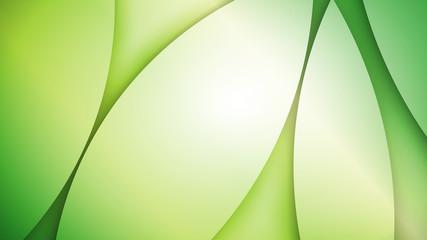 zielone tło wektor