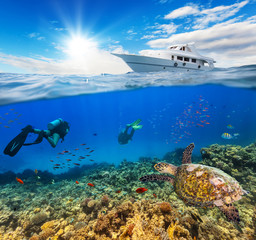 Underwater coral reef with scuba divers