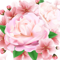 Pink peony macro background