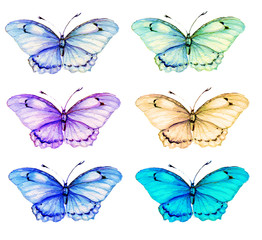 бабочки  ,акварель
