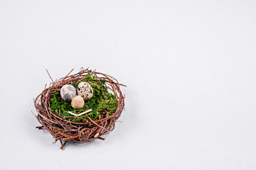 Quail eggs in a nest of twigs with green moss in the form of a smiley