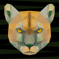 Abstract colored futuristic polygonal geometric puma background