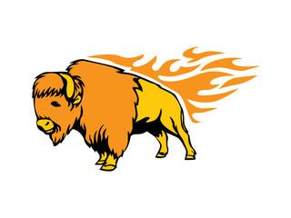 King Buffalo Flame