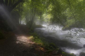 Nebel und durchbrechende Sonne am Fluß. Strahlende, morgendliche Sonne und zurückweichender Nebel bei langer Belichtung