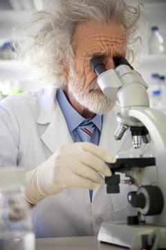 Tousled professor examining samples under microscope