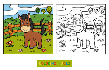 Coloring book (horse and background)