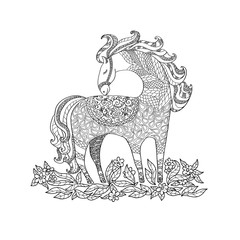 Illustration with horse for coloring