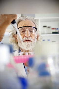 Senior professor filling sample glasses in laboratory