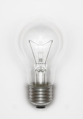 illuminated light bulb on white background