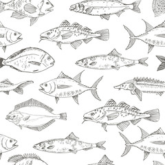 Fish Seamless Pattern. Fish collection
