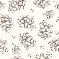 Black currant seamless pattern. Collection of berries.