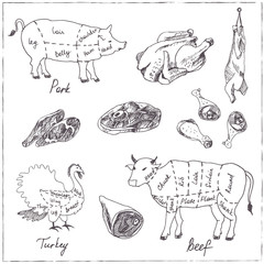 Vector hand drawn set with Meat.