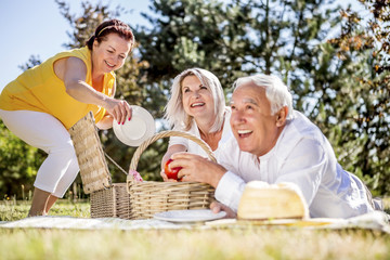 Happy elderly friends having a picnic on a meadow