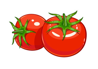 Pair red ripe tomato vector illustration eps10