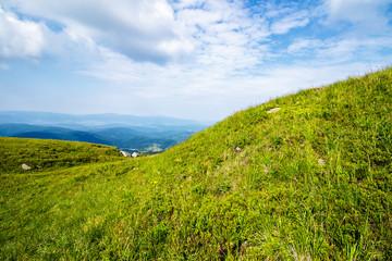 green grass on hillside meadow