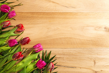 Free space on wooden background with tulips