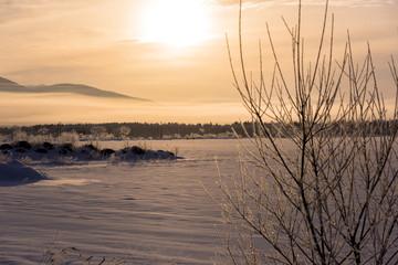 朝の光と霧氷の木々