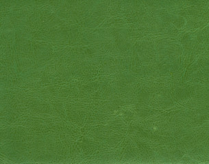 Green leather texture.