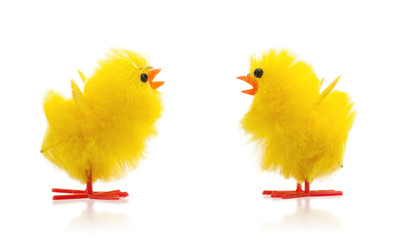 Two easter chicks, isolated