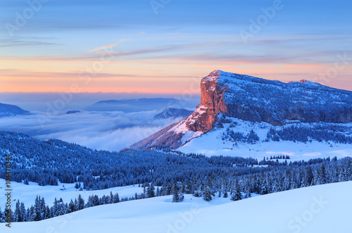 Fotomurales Winter forest on mountain range in French Alps during a colorful sunset.