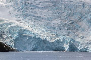 Melting glacier and iceberg in a Global Warming Environment at Gulf of Alaska