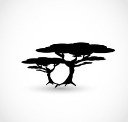African trees icon vector