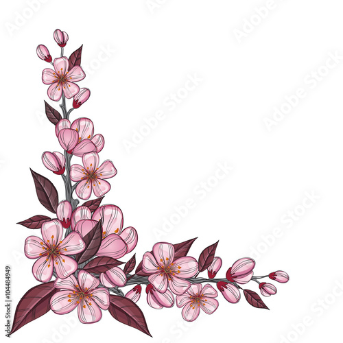 Tree Branch Drawing With Pink Cherry Flowers For Corner Decoration Isolated On White