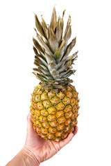 pineapple in a hand, isolated on the white