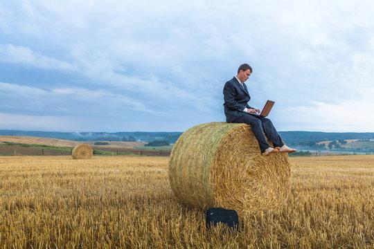 Contemporary businessman farmer in the landscape