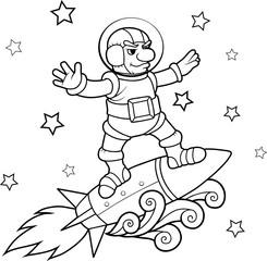 rocket surfer
