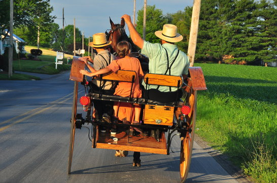 Lancaster County, Pennsylvania:  An Amish family riding along a country road in their open horse and buggy carriage *