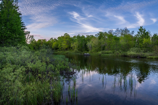 The Teal river in northern Wisconsin in early summer.