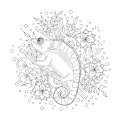 Chameleon coloring book illustration