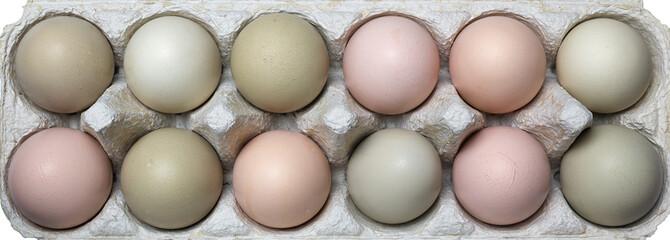 Fresh organic eggs in natural colour.