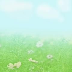 flower field under a light blue sky blurred texture