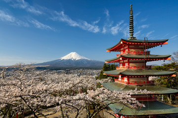 Deurstickers Japan Mount Fuji with pagoda and cherry trees, Japan