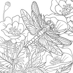 Zentangle stylized cartoon dragonfly insect is flying around poppy flowers. Sketch for adult antistress coloring page. Hand drawn doodle, zentangle, floral design elements for coloring book.