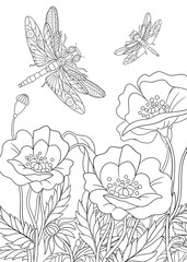 Zentangle stylized two cartoon dragonflies are flying around poppy flowers. Sketch for adult antistress coloring page. Hand drawn doodle, zentangle, floral design elements for coloring book.