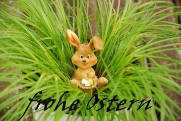 Osterhase im Gras mit Schrift