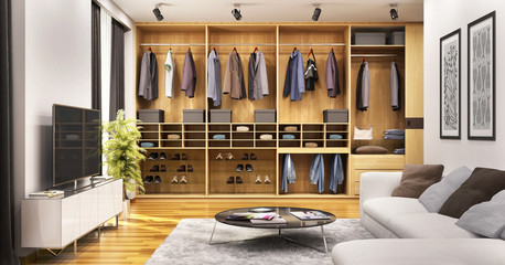Living room with modern closet