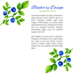 Watercolor blueberries. Hand drawn vector illustration. Can be used for banner, cards, wedding invitations etc