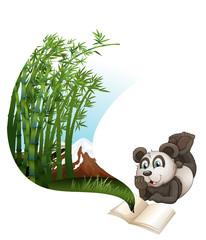 Panda reading book about bamboo