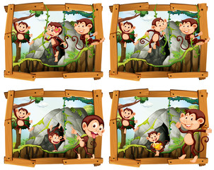 Four frames of monkeys by the cave