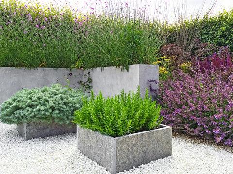 Beautiful garden with contemporary design