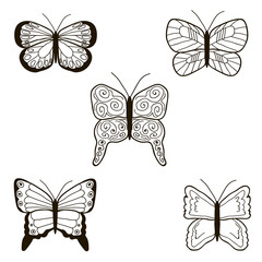Set of the black butterfly, hand draw