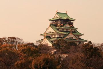 Fototapeta 大阪城 夕景
