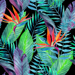Foto op Canvas Paradijsvogel Tropical leaves seamless pattern. Floral design background.