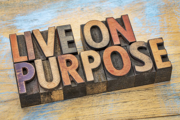 Live on purpose wood type banner Wall mural