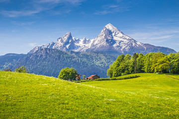 Wall Mural - Idyllic landscape in the Alps with green meadows and mountain tops