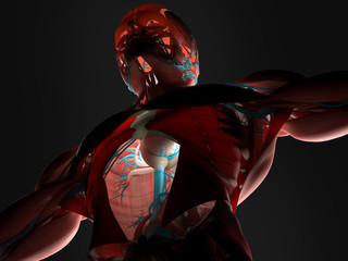Human anatomy 3D futuristic technology scanTorso. Back-lit.